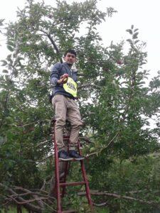 Photo d'Antony, membre de l'ASAMM, dans un pommier